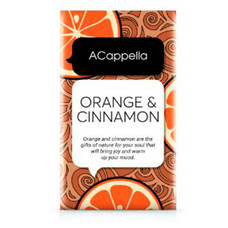 Апельсин в корице ароматическое саше, 70 г