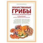 Научный реферат Лекарственные грибы - Фото