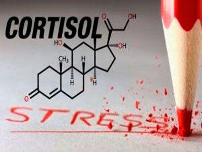 Кортизоловій живіт: причини появи та способи лікування
