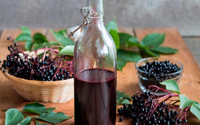 Рецепты применения бузины черной