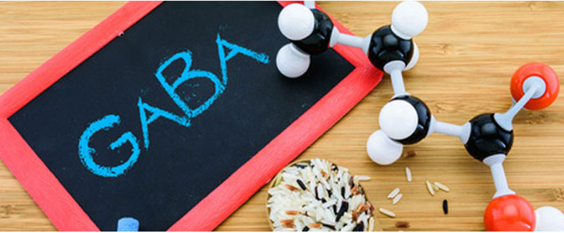 Що таке гамма-аміномасляна кислота (GABA)