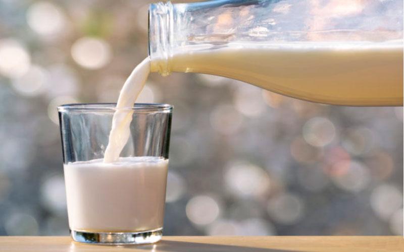 Чим відрізняється молоко без лактози від звичайного