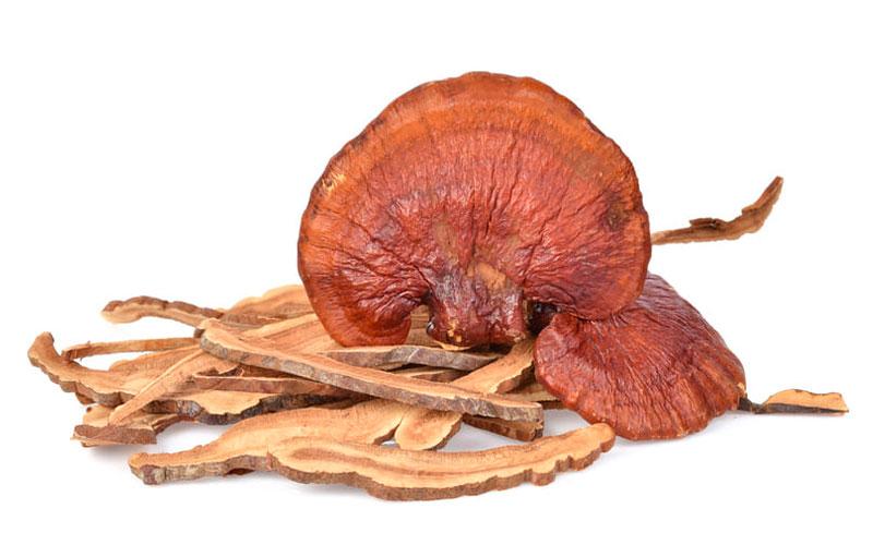 Что такое грибы рейши?