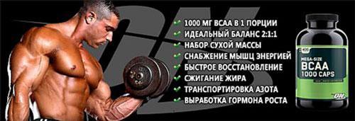 BCCAA 1000